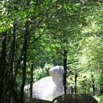 Haut-Languedoc Tarn