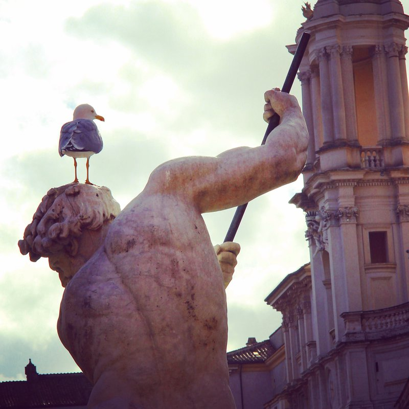 roma__piazza_navona_by_arnopiel-d8s94ly